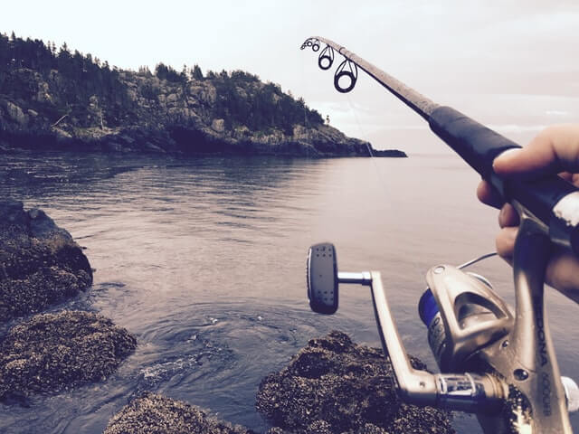Factors to Consider in Choosing the Right Fishing Reel